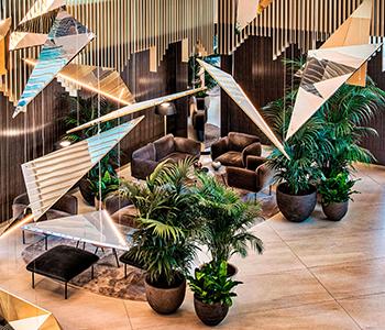 Hotel Sofia Hall 350x300