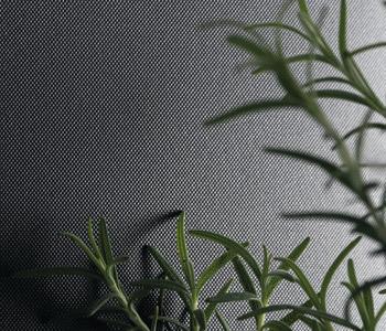 Plex Texture