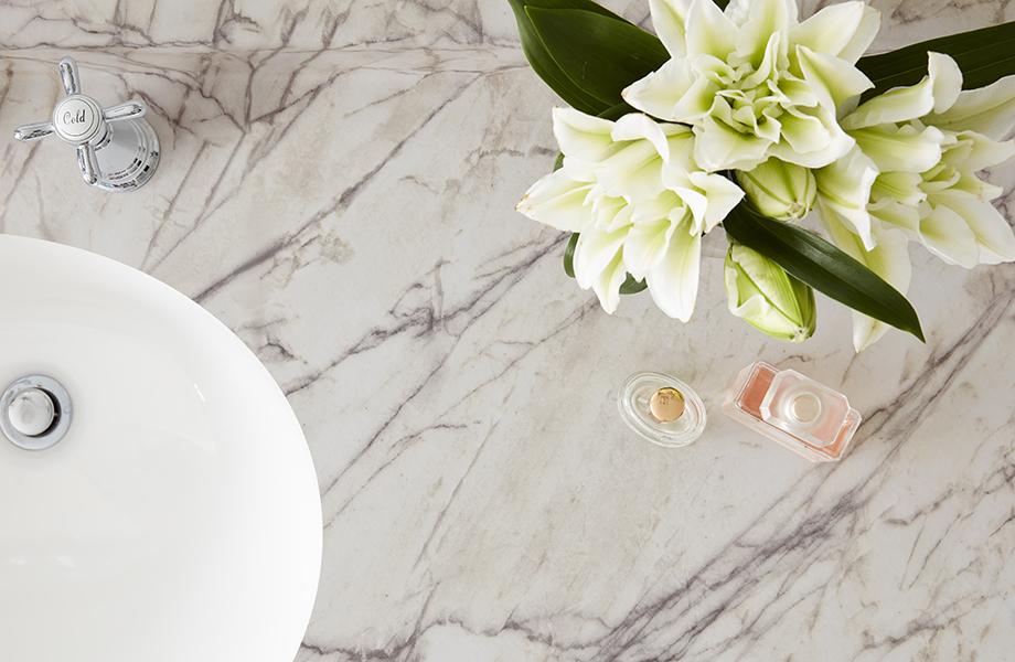 Close-up of 9536-34 Quartzite Bianco laminate bathroom countertop with plant
