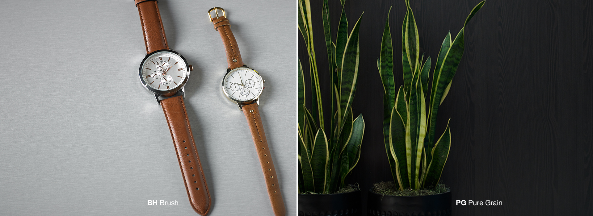 Watch and plant