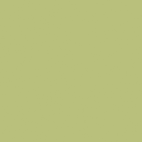 Pale Olive