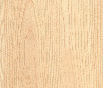 Manitoba Maple