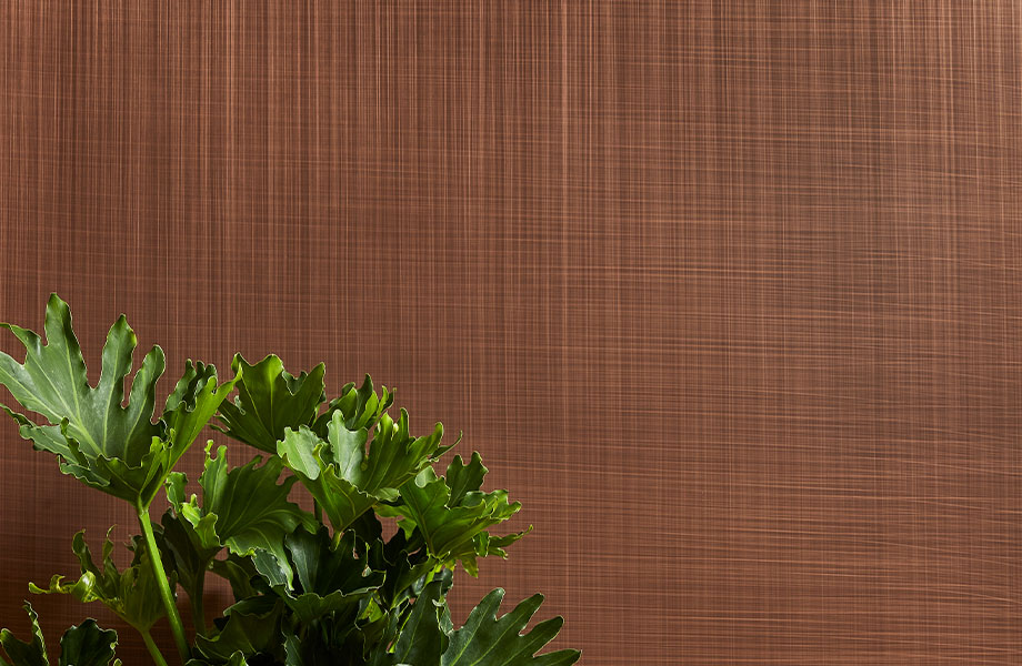 M5392 Copper Veil metal laminate wall panel with plant