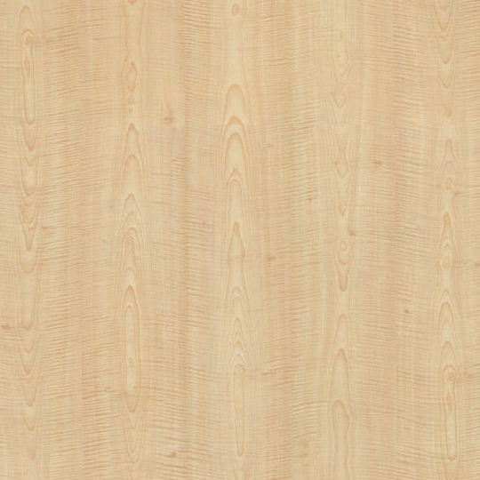French Sycamore